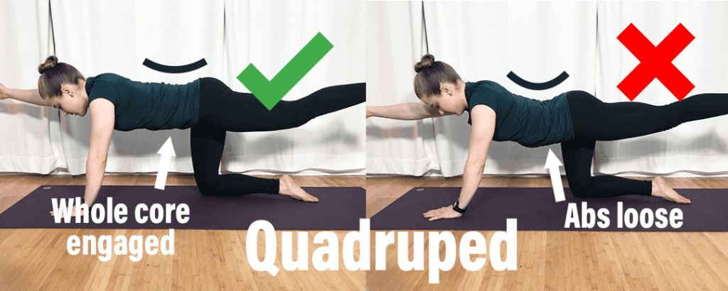 How to fix low back injury Quadruped showing proper positioning with whole core engaged instead of abs loose
